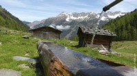 8 Tage - Imst/Tirol