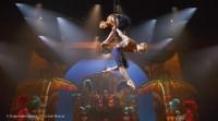 1 Tag - CIRQUE DU SOLEIL PARAMOUR Cirque du Soleil und Stage Entertainment