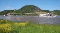 3 Tage - MARITIM Hotel Königswinter am Rhein