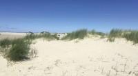 8 Tage - Urlaub & Auszeit auf der Insel Juist